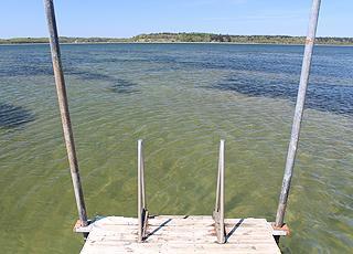 Klart badevand ved badebroen i sommerhusområdet Vile