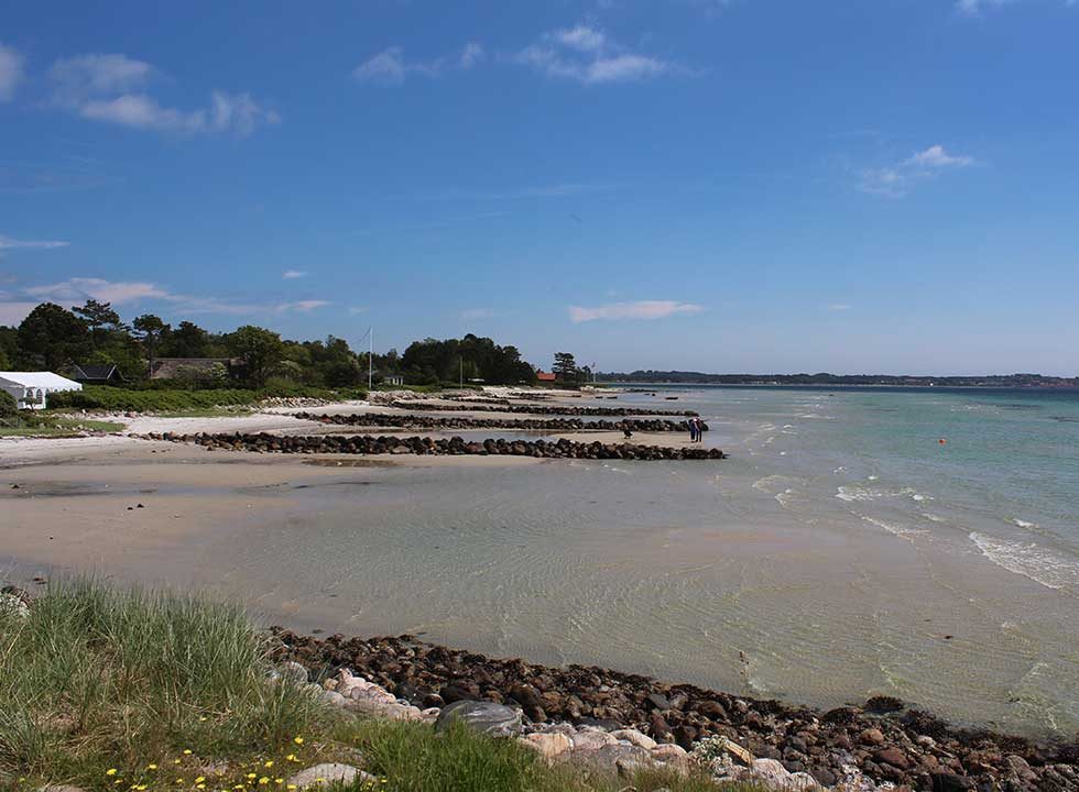 Sandstrand med høfder og dejligt badevand i sommerhusområdet Lyngsbæk