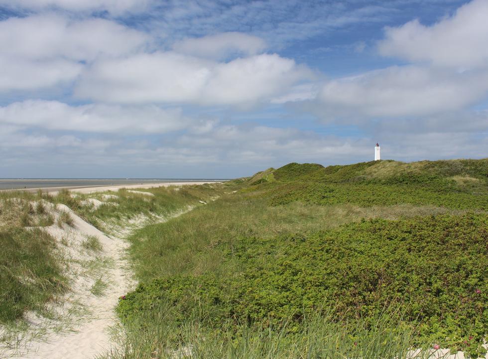 Klitlandskaber og Blåvandshuk Fyr bag den brede sandstrand i Blåvand