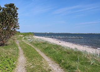 Ein typischer Limfjord-Strand bei dem Ferienhausgebiet Søndbjerg
