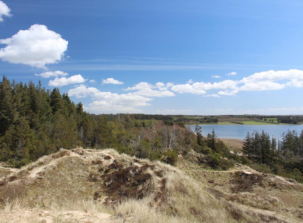 Den smukke og kuperede Nationalpark Thy ligger langs Vesterhavet i den sydelige del af Nordvestjylland