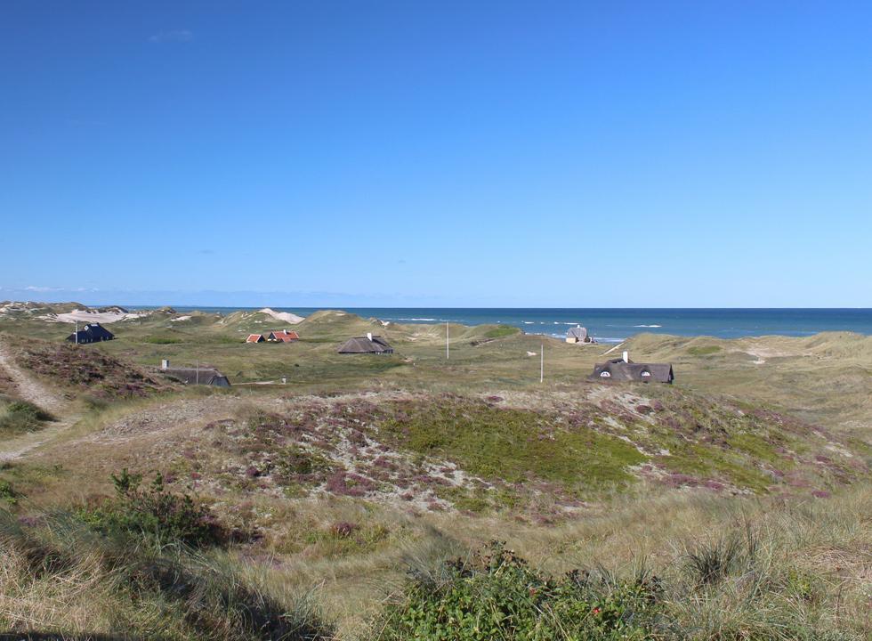 Sommerhuse i klitlandskabet bag stranden i Gl. Skagen