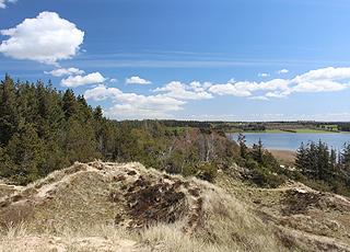 Der schöne und hügelige Nationalpark Thy liegt an der Nordsee im südlichen Teil von Nordwestjütland
