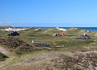 Ferienhäuser in der Dünenlandschaft hinter dem Strand von Gl. Skagen