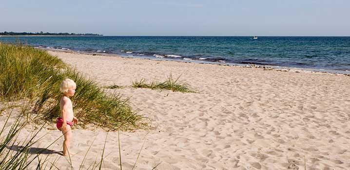 Et lille barn står ved klitterne og ser ud over stranden og det blå vand