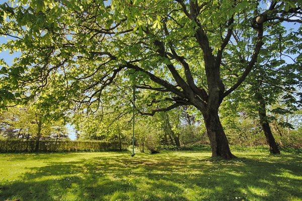 Sommerhus 17-2234