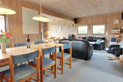 Holiday home, 20-2210, Vejlby Klit