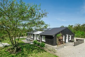 Ferienhaus, 22-1399, Söndervig