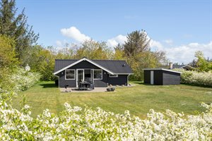 Ferienhaus, 24-2020, Skaven Strand