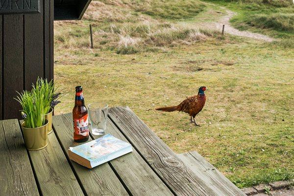 Sommerhus SOL-28-4222 i Fanø, Rindby til 4 personer - billede 31996311