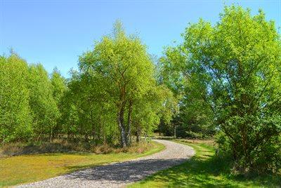 Holiday home, 29-2012, Romo, Vesterhede