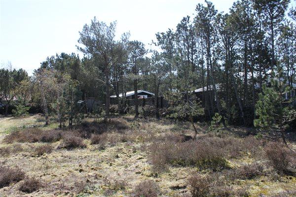 Sommerhus 47-4021
