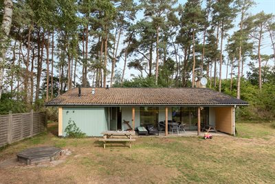 Holiday home, 95-1111, Dueodde