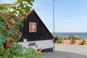 Ferienhaus, 95-6311, Vang
