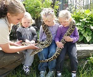 Blåvand Zoo børn slange