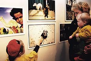 Danmarks Fotomuseum udstilling om dyr