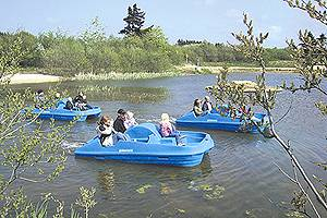 Pedal boats on the large lake in Family Farm Fun Park