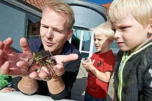 Mann holder krabbe i hånden foran barna