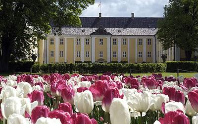 Tulipaner i slotshaven foran Gavnø Slot