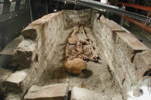 Museet Gråbrødekloster - skelet