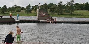 Bad i ferskvand med udsigt til bøgeskov i Jels Søbad