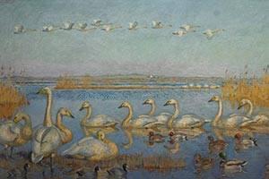 Målning av svanar