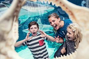 Family in a shark jaw
