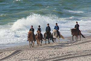 Een groep ruiters op het strand