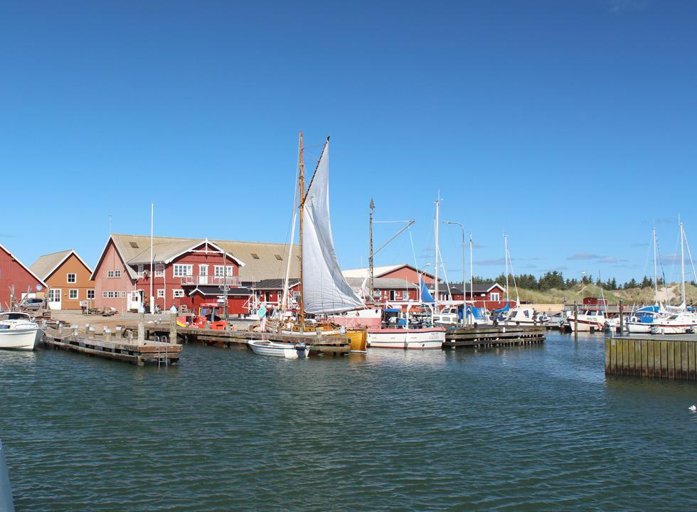 The cosy and active harbour in the holiday area Ålbæk