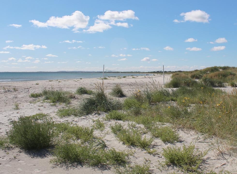 View of the southern bathing beach in the holiday home area Ålbæk