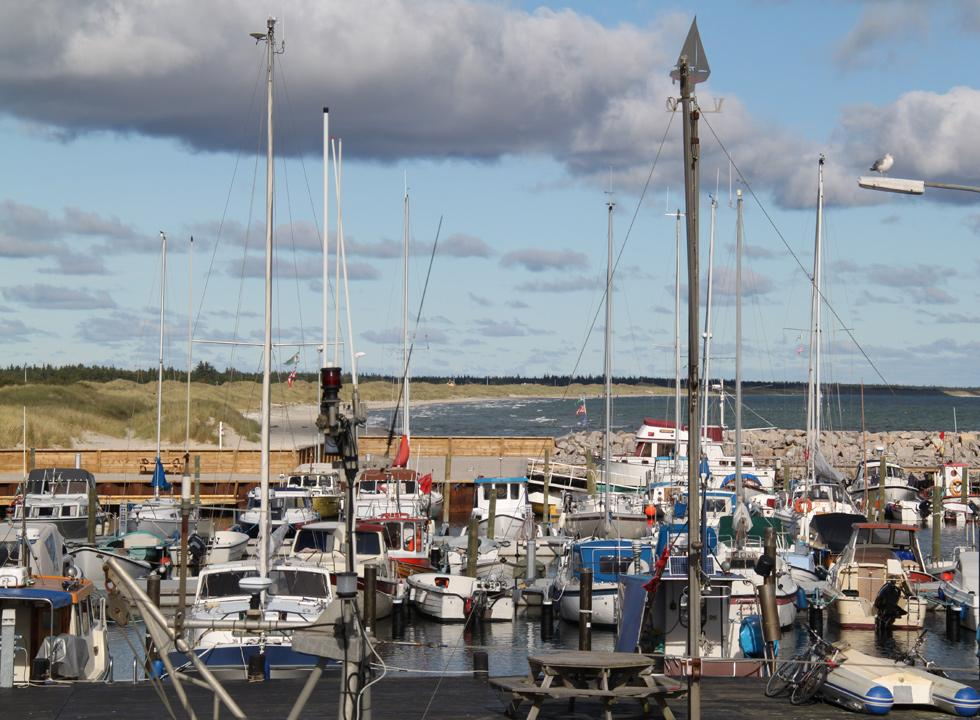 View of the harbour in Ålbæk with the northern bathing beach in the background