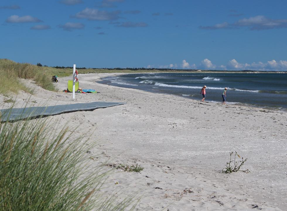Children paddle in the water's edge on the beach of the holiday area Ålbæk
