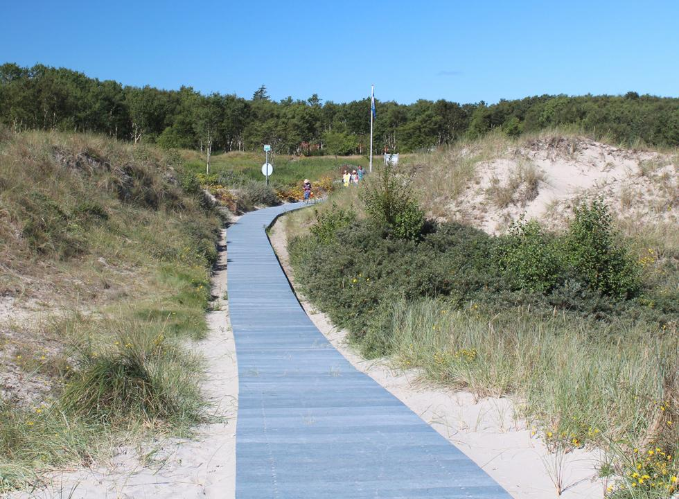 Path to the bathing beach in the holiday home area Ålbæk