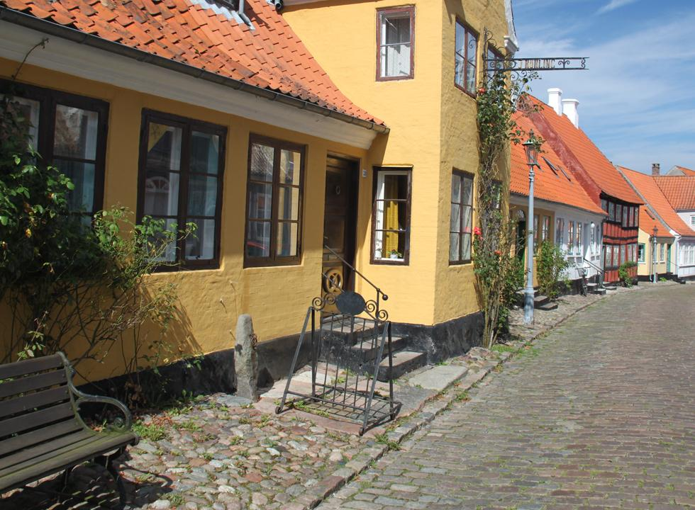 Roses in front of the historic houses in the streets of Ærøskøbing