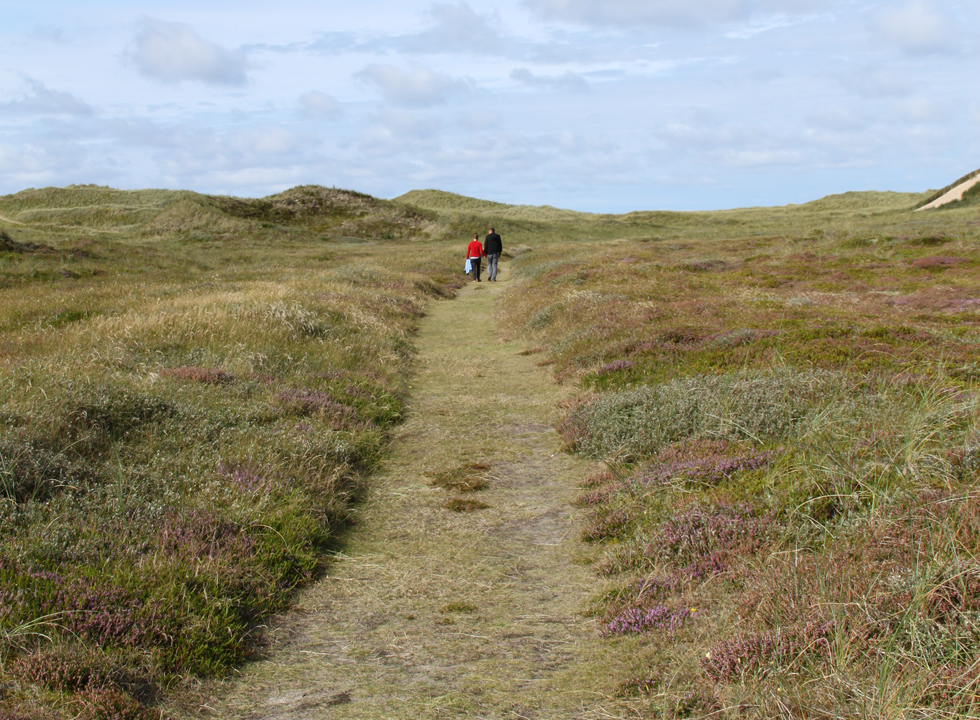 Path, which leads from the lighthouse Lodbjerg Fyr to the shore, close to Agger