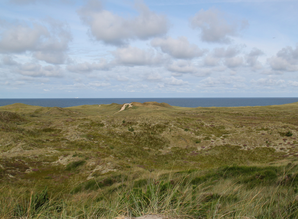 The untouched dune landscape of Nationalpark Thy by the lighthouse Lodbjerg Fyr, 8 km from Agger