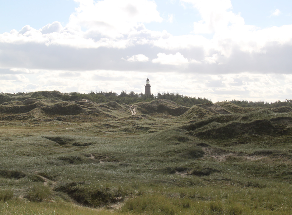 Hilly dune landscape between the shore and the lighthouse Lodbjerg Fyr in Nationalpark Thy, 8 km from Agger