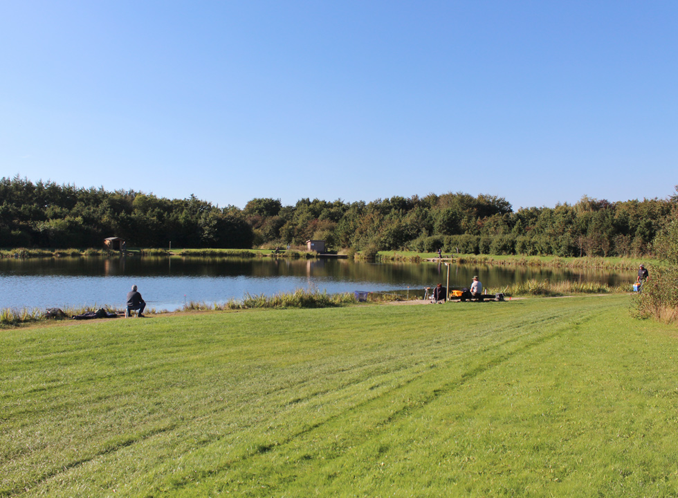 The holiday town Arrild offers a large beautiful fishpond in scenic surroundings