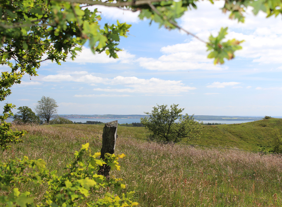 The view from the path, leading to the view point Agri Bavnehøj in Mols Bjerge, close to Begtrup Vig