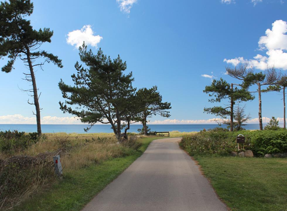 The road towards the holiday homes by the beach, Bjerge Nordstrand