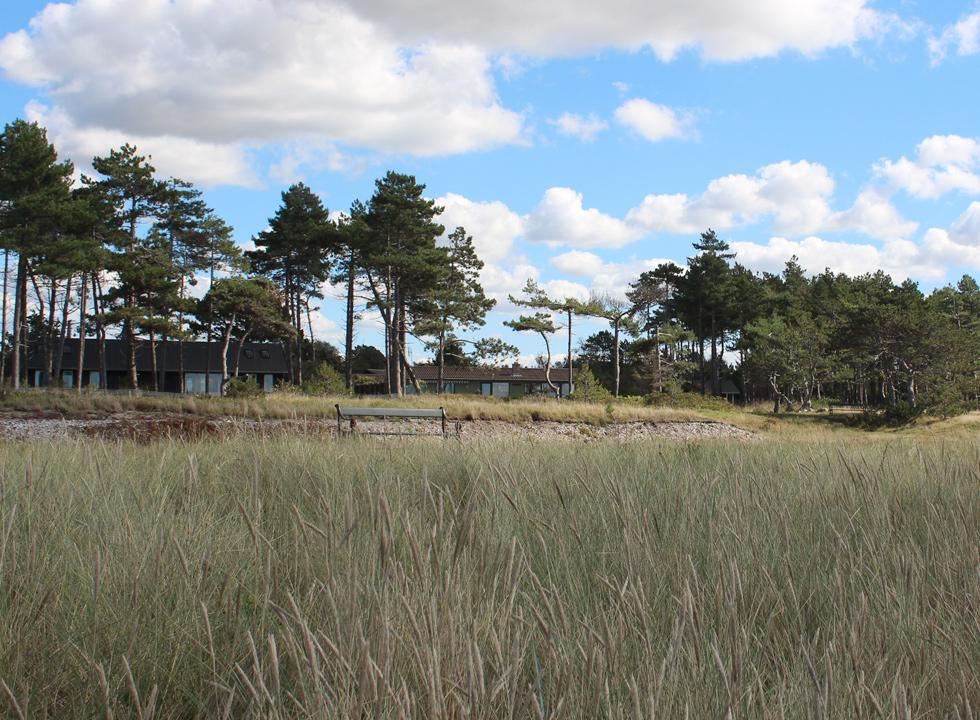 Holiday homes between the trees behind the beach, Bjerge Nordstrand