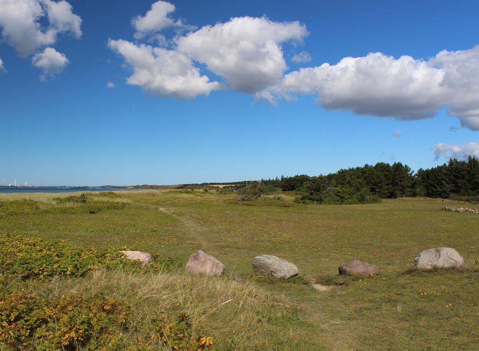 Behind the beach in Bjerge you can walk in a scenic nature area