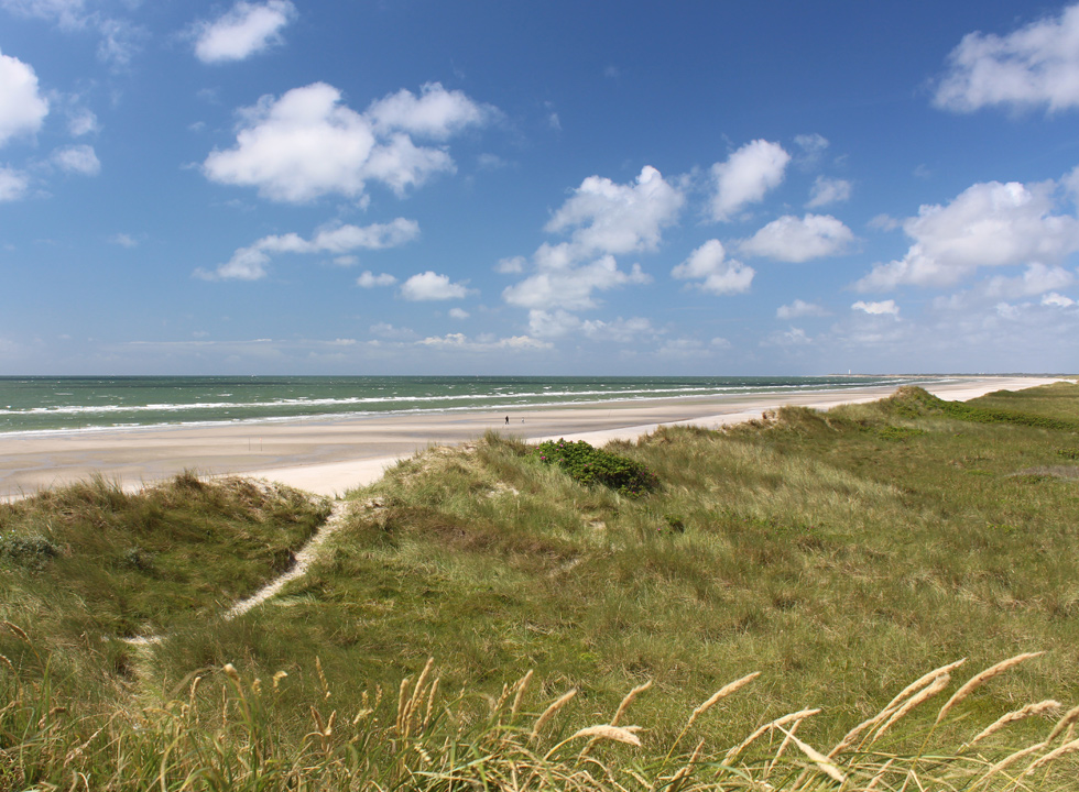 View of the wide sandy beach on the isthmus Skallingen near Blåvand, Ho