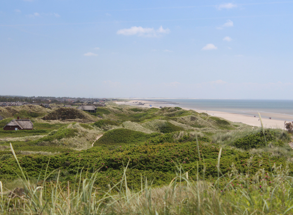 View of the beach, the dunes and the holiday homes in Blaavand