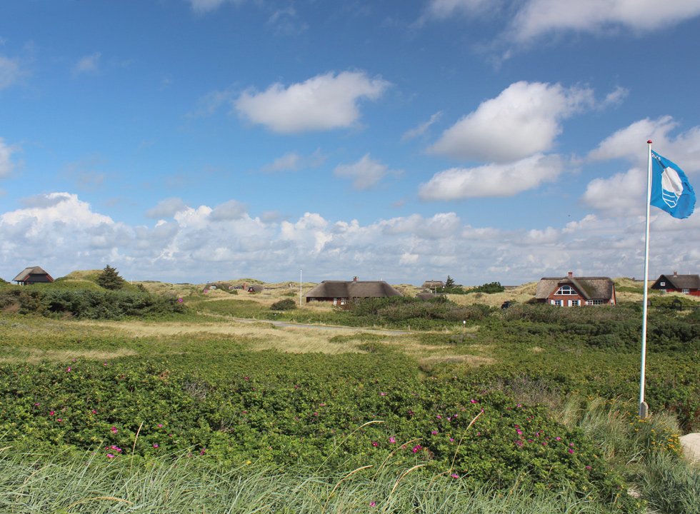 View of the holiday homes in the hilly surroundings from the dunes behind the beach in Blaavand