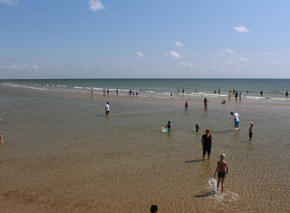 Shallow and clear bathing water by the wooden pier on the beach Hvidbjerg Strand in Blaavand