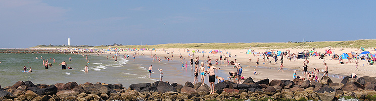 A summer day with many guests on the bathing beach Hvidbjerg Strand in Blaavand