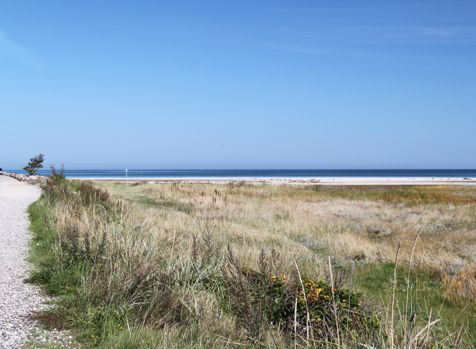 The fine white and sandy beach in Bønnerup is surrounded by lovely nature