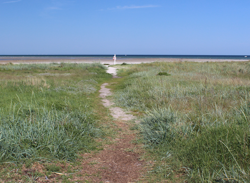 Path, leading to the wide sandy beach in Bønnerup Strand