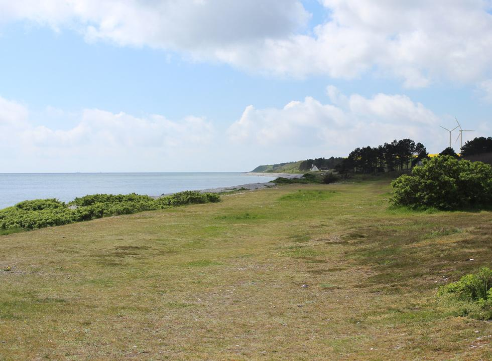 View of the shore towards south from Boeslum